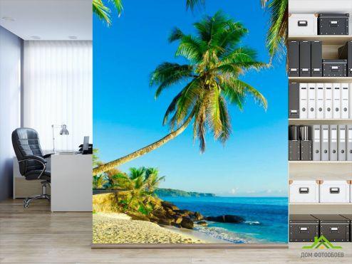 обои Пляж Фотообои Пальмы возле моря