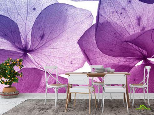 Фиолетовые  Фотообои в кухню Цветы