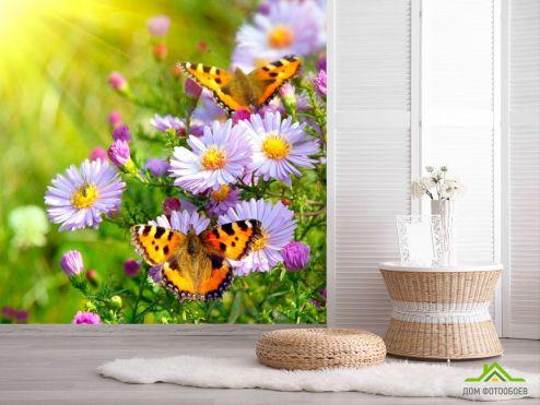 Животные Фотообои Бабочки в цветах