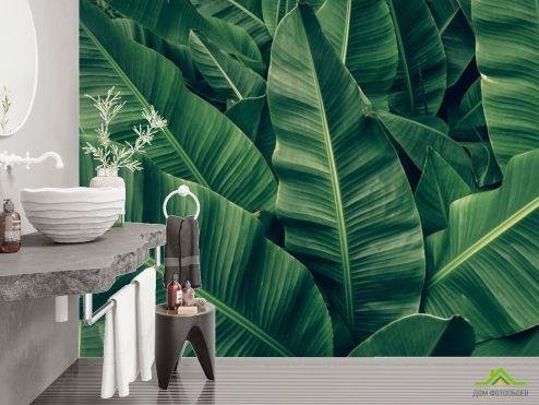 Фотообои в ванную по выгодной цене Фотообои Зелёные банановые листья