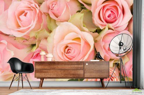 Розы Фотообои roses