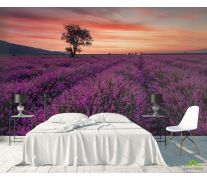 Фотообои сиреневое поле и розовый закат