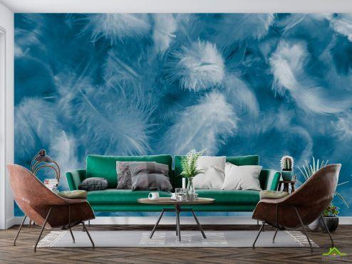 Фотообои перья по выгодной цене Фотообои Синие пёрышки