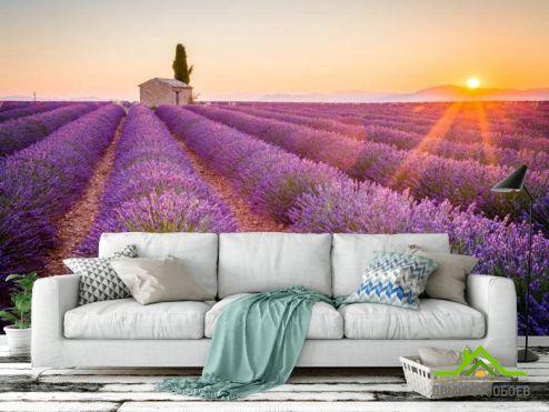 Прованс Фотообои Тосканский прованс