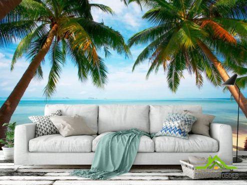 обои Море Фотообои Две пальмы, пляж