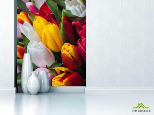 Тюльпаны Фотообои тюльпаны яркие
