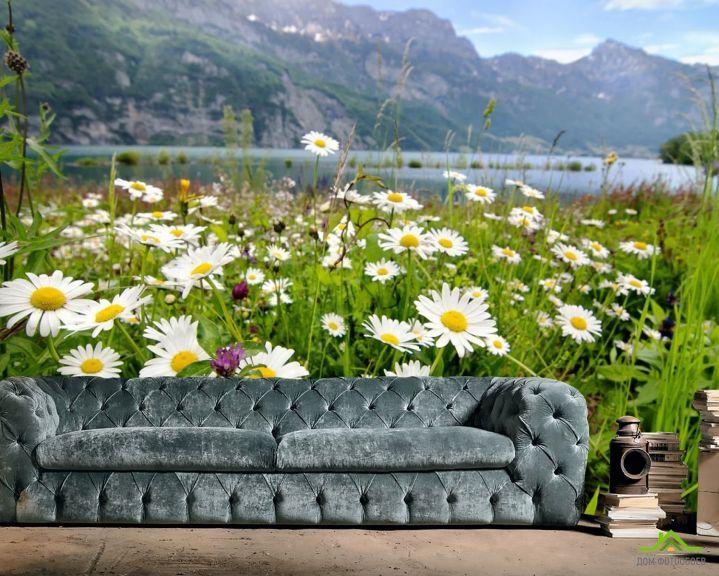 Фотообои ромашки в горах