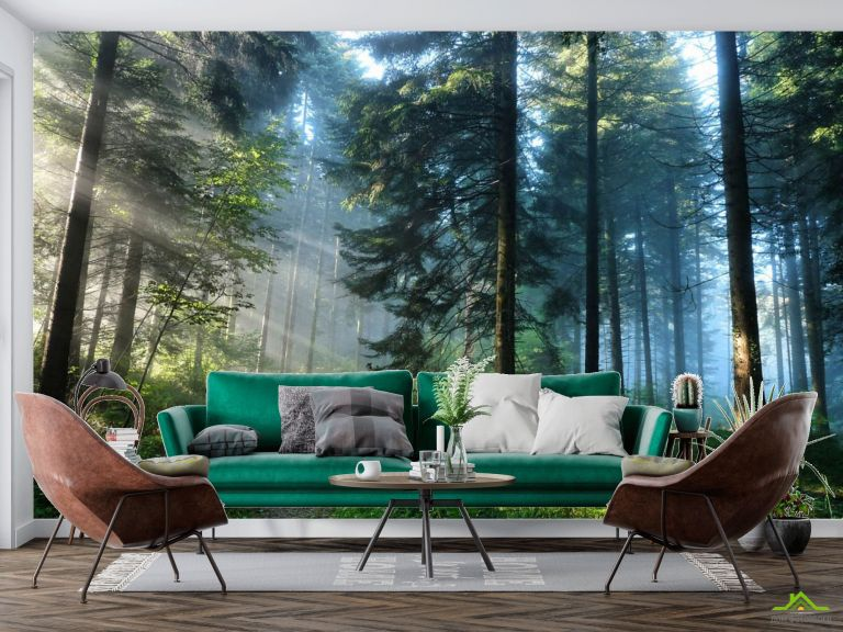 Фотообои Деревья в лесу
