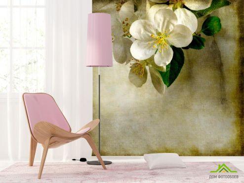 Вишня Фотообои Цветок вишни