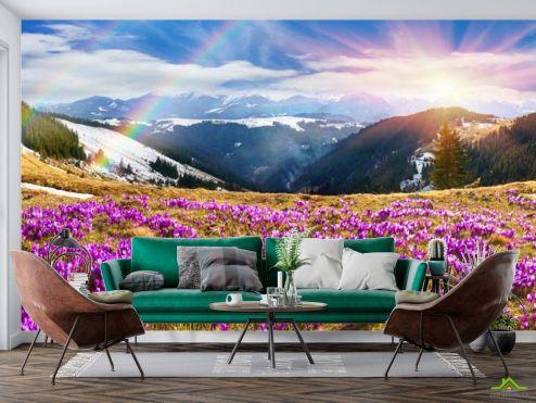 Природа Фотообои поляна с сиреневыми цветами в горах