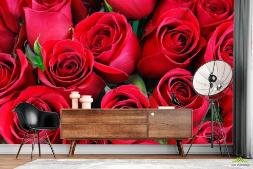 Розы Фотообои красные розы