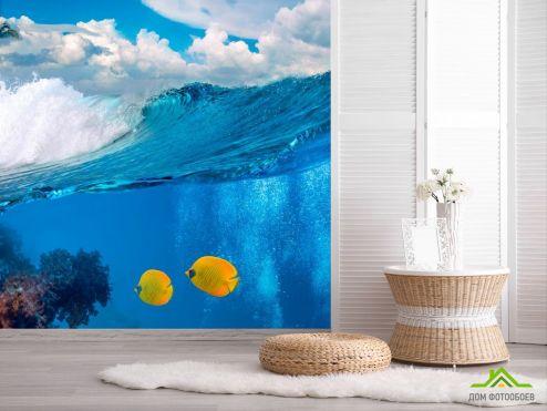 обои Рыбы и море Фотообои Две рыбки в море
