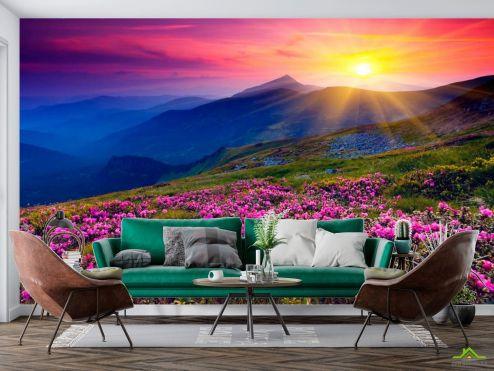 Природа Фотообои Закат, солце, цветы купить
