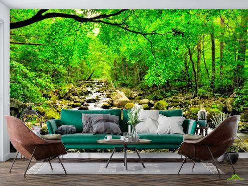 Природа Фотообои Ручей, деревья