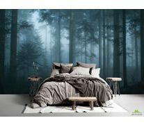 Фотообои темный лес