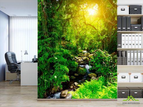 обои Лес Фотообои Далеко в лесу