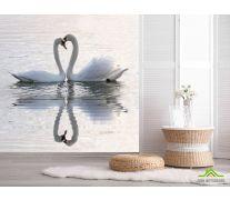 Фотообои Два лебедя