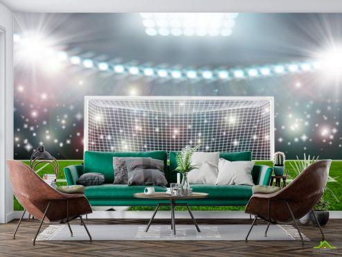 Спорт Фотообои мяч и ворота купить