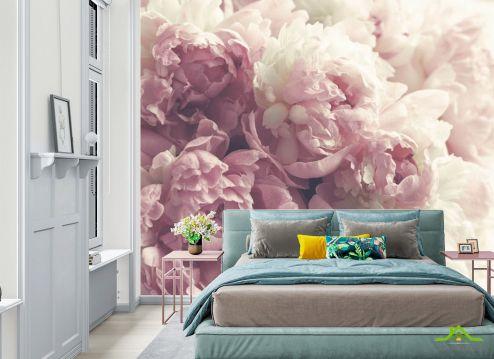 в спальню Фотообои Розовые пионы