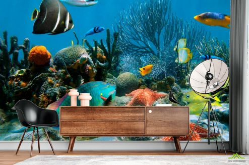 Море Фотообои Морские рыбы