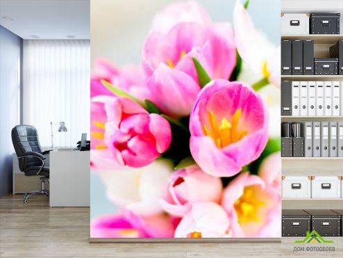 Тюльпаны Фотообои Тюльпаны розовых тонов купить