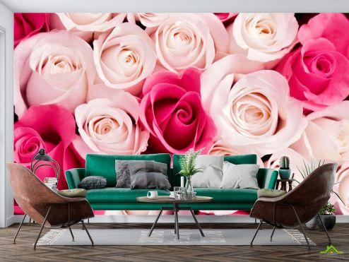 Цветы Фотообои Розовые бутоны роз купить