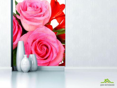 обои Цветы Фотообои Бледно-розового оттенка розы