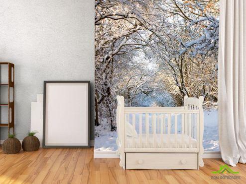зима Фотообои Пришла зима