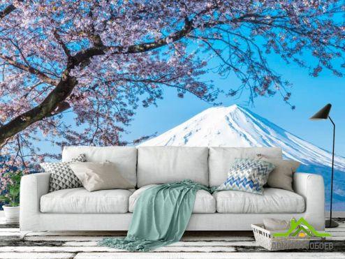 обои Горы Фотообои Гора, снег,цвет