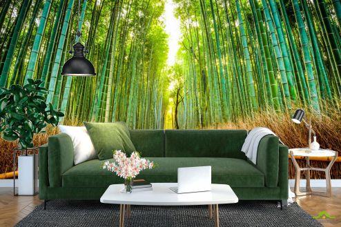 Расширяющие пространство Фотообои Бамбуковая роща купить
