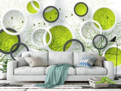 3Д  Фотообои  Круги и зеленые деревья