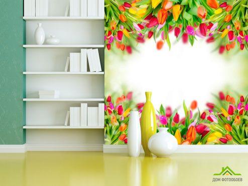 Тюльпаны Фотообои Рамка из тюльпанов купить