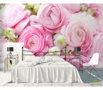 Фотообои Розовые рунункулюсы