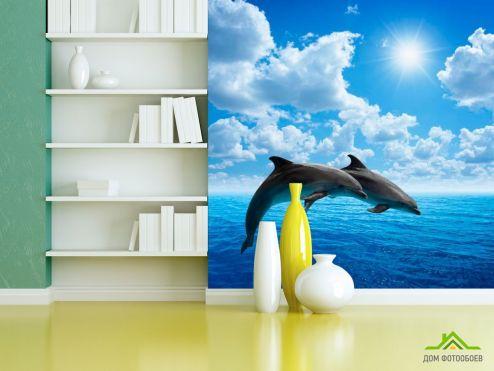 Дельфины Фотообои Прыжки дельфинов купить