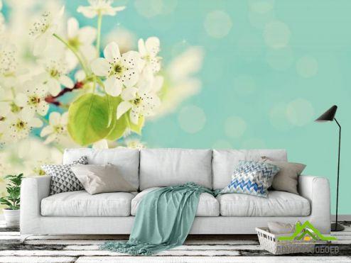 обои Абрикос Фотообои Беленькие абрикосовые цветы