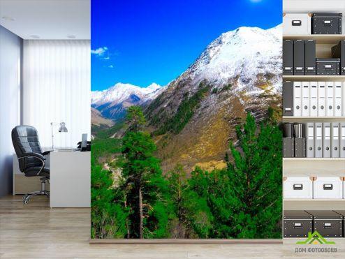 обои Горы Фотообои Месяц, гора, ёль