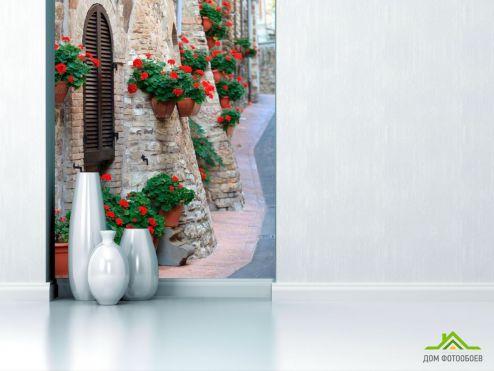 Улицы Фотообои Цветы на стенке дома