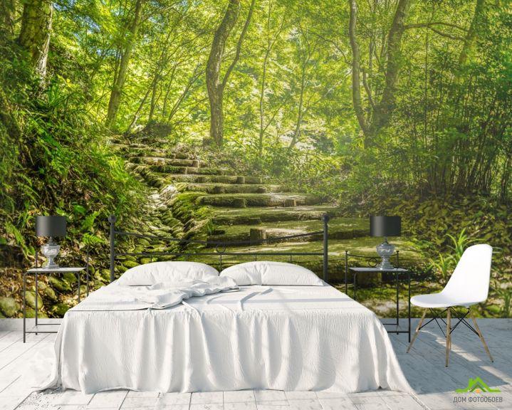 Фотообои деревянные ступеньки в лесу