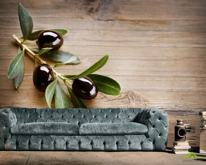 Фотообои оливковая веточка