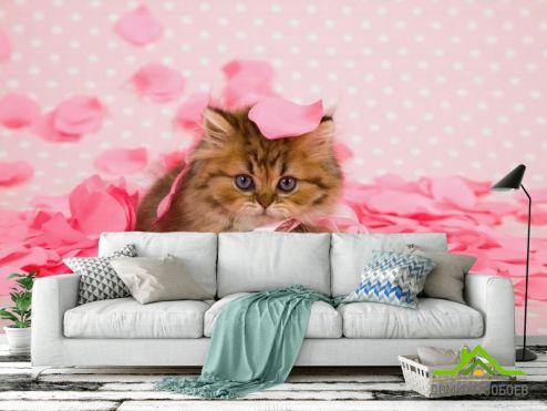 обои Животные Фотообои котёнок в лепестках роз