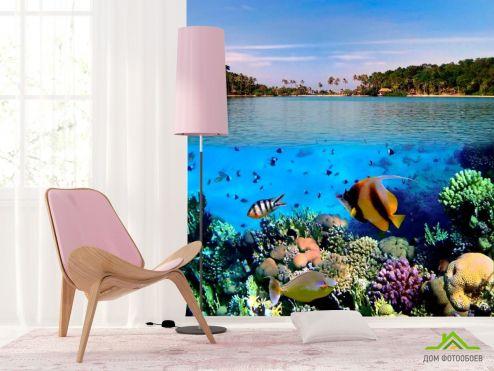 Рыбы и море Фотообои Морские рыбки
