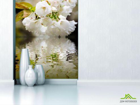 обои Абрикос Фотообои Цветы абрикоса над речкой