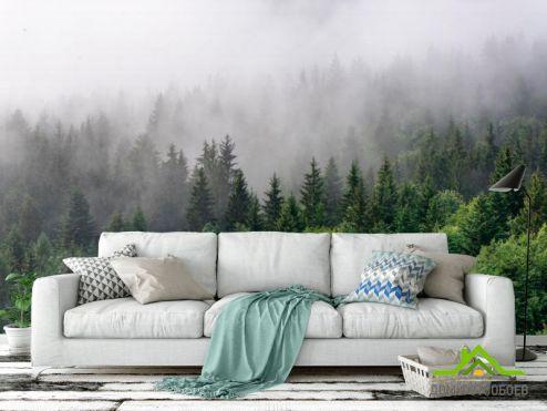 Каталог фотообоев по выгодной цене Фотообои Лес в тумане