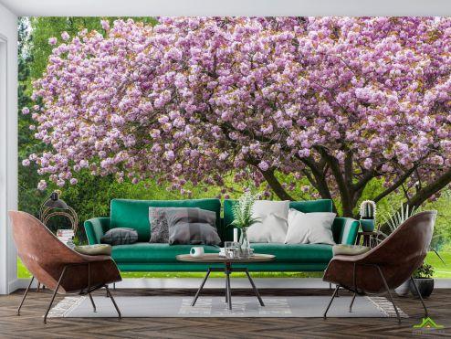 Фотообои Природа по выгодной цене Фотообои дерево в цвете