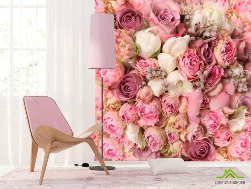 обои Цветы Фотообои Розы всех оттенков