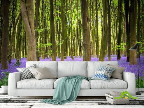 Фиолетовые обои Фотообои Ковер с цветов