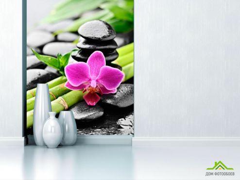 обои Орхидеи Фотообои Бамбук, камни, орхидея