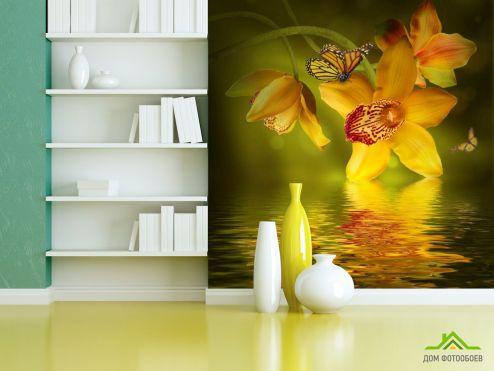 обои Цветы Фотообои Орхидеи с бабочками