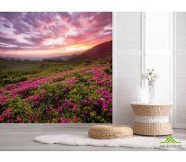 Фотообои закат над сиреневыми цветами