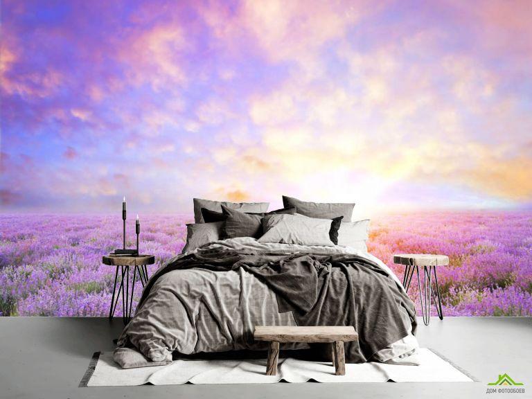 Фотообои Восход в провансе